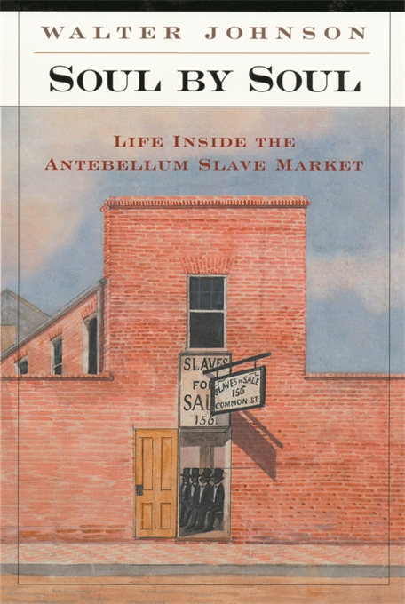 Soul by Soul: Life Inside the Antebellum Slave Market by Walter Johnson